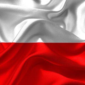 Reprezentacja Polski U18 - Siedmiu zawodników KS Budowlani powołanych na obóz we Francji