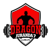 Dragon - logo